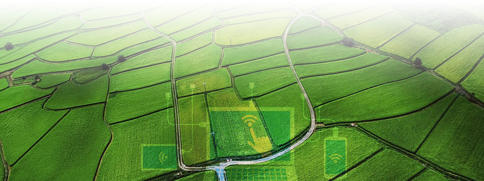 贵州农业软件